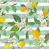 Seamless Lemon Pattern With Tropic Fruits, Leaves, Flowers Background. Hand Drawn Vector Illustratio poster