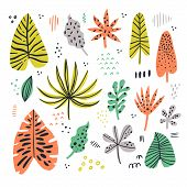 Exotic Leaves Hand Drawn Flat Illustrations Set. Jungle, Rainforest Foliage Sketch Cliparts Collecti poster