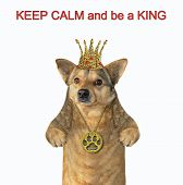 The Dog Is Wearing A Crown And A Locket. Keep Calm And Be A King. White Background. Isolated. poster