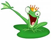image of prince charming  - Happy frog prince on a lily pad - JPG