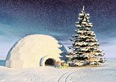 picture of igloo  - christmas igloo at the morning - JPG