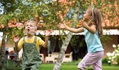 image of fleet  - Children playing at the garden - JPG