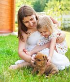 foto of puppies mother dog  - Cute little girl and her mother hugging dog puppies - JPG