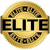 Elite gold label, vector illustration