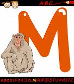 foto of macaque  - Cartoon Illustration of Capital Letter M from Alphabet with Macaque Animal for Children Education - JPG