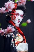 stock photo of geisha  - young pretty geisha in kimono with sakura and decoration - JPG