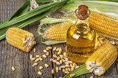 stock photo of ethanol  - Freshly picked domestic corn with corn oil - JPG