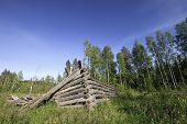 foto of collapse  - Old collapsed barn in the middle of a field - JPG
