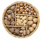 stock photo of pecan nut  - a variety of nuts  - JPG