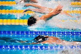 stock photo of swim meet  - Butterfly men swimming race on swimming pool - JPG