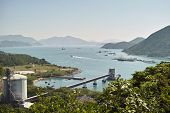 picture of norway lobster  - Lamma Island Fishing village - JPG