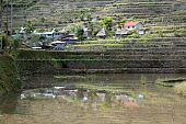 image of ifugao  - Water traditional houses and rice fields in Batad near Banaue - JPG