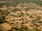 image of ethiopia  - dry grazing land in the sahel of Ethiopia - JPG