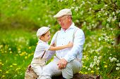 image of grandpa  - grandson playing with grandpa in spring garden - JPG