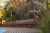 stock photo of vegetation  - Wooden deck and bench by the pool - JPG