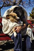 pic of bent over  - Man with dog wrapped in blanket sitting on bench bent over dog - JPG