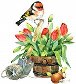 picture of grass bird  - Garden Spring Flowers and Bird - JPG