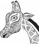 Постер, плакат: Beautiful adult Giraffe Hand drawn Illustration of ornamental giraffe isolated giraffe on white b