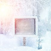 Постер, плакат: Winter background scene landscape Wooden sign in the winter forest winter wonderland Winter tre