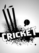 image of cricket shots  - abstract grungy cricket background with stamp and leather ball - JPG