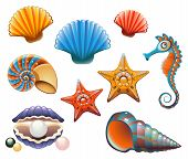 stock photo of scallop-shell  - Vector collection of sea shells and stars - JPG