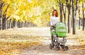 stock photo of buggy  - Happy young mother with baby in buggy walking in autumn park - JPG