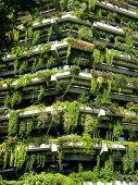 Vegetal Building poster