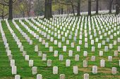 picture of arlington cemetery  - Arlington Cemetery with a unique pattern of tombstones - JPG