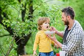 Father Son Eat Food And Have Fun. Nutrition Habits. Little Boy And Dad Eating. Nutrition For Kids An poster