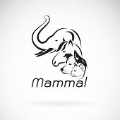 Vector Of Mammal Group Design On White Background., Elephant, Horse. Dog. Cat.,  Animals. Pet. Mamma poster