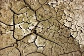 Cracks In Mud From Above. Cracks In Mud Due To Drought. Cracks In The Soil Of Dried Out Lake poster