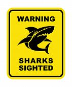 Shark Sighted Warning Sign. Shark Silhouette Icon poster