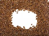 foto of flax plant  - border frame of flax seeds on white background with copy space - JPG
