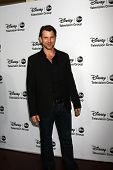 LOS ANGELES - JAN 10:  Wil Traval attends the ABC TCA Winter 2013 Party at Langham Huntington Hotel