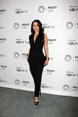 LOS ANGELES - SEP 12:  Aimee Garcia at the PaleyFest Fall Previews:  Fall Farwell-