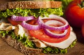 stock photo of deli  - Homemade Turkey Sandwich with Lettuce Tomato and Onion - JPG
