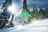 pic of snow-slide  - view of a young girl snowboarding in winter environment