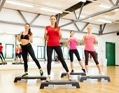 fitness, sport, training, gym and lifestyle concept - group of smiling female doing aerobics