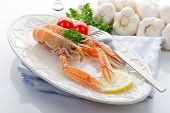 picture of norway lobster  - norwey lobster with tomatoes and lemon on dish - JPG