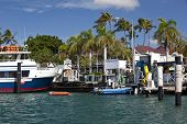 The harbor in Lahaina is a popular tourist attraction on Maui.