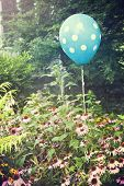 Cheerful polka dot balloon is an unexpected accent in a flower garden