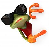 stock photo of hooker  - Frog - JPG