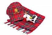picture of highland-cattle  - Scottish Red tartan cap tartan scarves and highland cattle Isolated on White - JPG