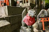 stock photo of inari  - Stone fox  - JPG