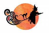 image of sorcery  - Wicked witch molted moon and cat  - JPG
