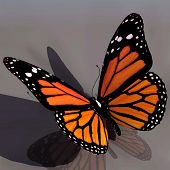 stock photo of monarch butterfly  - 3D Butterfly - JPG