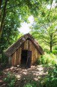 stock photo of century plant  - 18th Century medieval woodcutters shed in forest - JPG