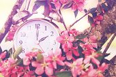 picture of morning  - Set your clocks back in spring with this whimsical image of a clock surrounded by spring flowers set to 2 o clock - JPG