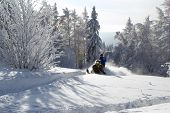 picture of ural mountains  - Athlete on a snowmobile moving in the winter forest in the mountains of the Southern Urals - JPG