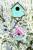 picture of nesting box  - Decorative nesting boxes on bright background - JPG
